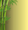 green bamboo on yellow background vector image vector image