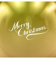 Merry Christmas Holiday vector image vector image