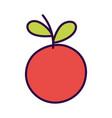 vegetable fresh harvest tomato icon design vector image vector image