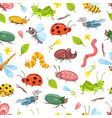 beetle pattern isolated bugs ladybug dragonfly vector image
