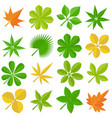 leaves icon set 3 vector image vector image