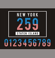 set number texture flag usa vector image