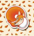 cute cartoon sleeping fox on oak leaves vector image
