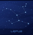 constellation lepus hare night star sky vector image vector image