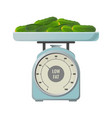 fresh cucumbers with low fat contain on mechanical vector image vector image