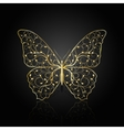 Gold butterfly with floral pattern vector image vector image