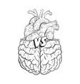 heart vs brain concept of mind against love fight vector image
