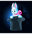 magic rabbit vector image