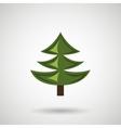 pine tree design vector image vector image