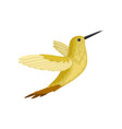 small tropical bird in flying action american vector image