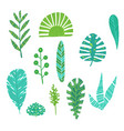 tropical leaves summer jungle green palm leaf vector image