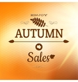 Enjoy Autumn Background EPS 10 vector image vector image