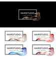 Hair Salon Logo vector image vector image