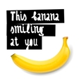 Happy banana background vector image