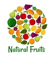 Natural fruits placard background vector image vector image