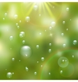 Water drops on green background plus EPS10 vector image vector image
