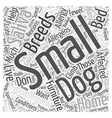 why do small dogs help with hypoallergenic vector image vector image