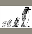baby penguin hand drawn picture sketch vector image vector image
