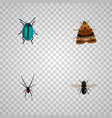 set of bug realistic symbols with spider fly vector image