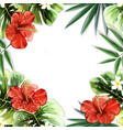 tropical plants flowers seamless pattern vector image