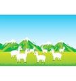 Herd sheep in field vector image