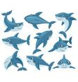 cartoon sharks cute underwater shark animals vector image vector image