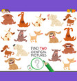 find two identical dogs task for children vector image vector image