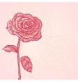 Flower invitation floral vintage card vector image vector image