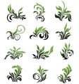 green floral elements curled leafs vector image vector image