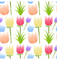 seamless background with colorful tulip flowers vector image