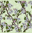 seamless pattern with flowering apple tree diagona vector image