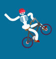 skeleton on bicycle skull and bmx boy skeletons vector image