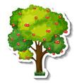 apple tree sticker on white background