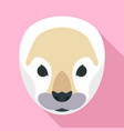 arctic seal icon flat style vector image