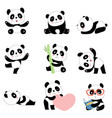 cute panda characters chinese bear newborn happy vector image vector image
