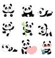 Cute panda characters chinese bear newborn happy