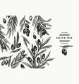 olive branch design template hand drawn food vector image