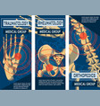 rheumatology orthopedics and traumatology banner vector image