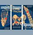 rheumatology orthopedics and traumatology banner vector image