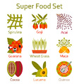 Super food icons set vector image vector image
