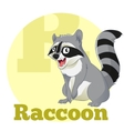 ABC Cartoon Raccoon vector image vector image