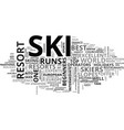 aito s top ski resorts text word cloud concept vector image vector image