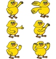 little chicken collection vector image