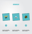 set of summer icons flat style symbols with turtle vector image