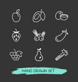 set of vitamin icons line style symbols with vector image vector image