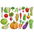 vegetables isolated sketch set with fresh veggies vector image vector image