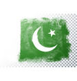 vintage grunge texture flag pakistan vector image vector image