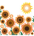 yellow and orange sunflowers vector image vector image