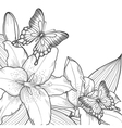 background with lilies and butterflies vector image vector image