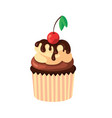 cupcake with cream chocolate and fresh cherry vector image